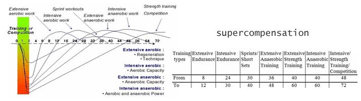 supercompensatie-overtraining